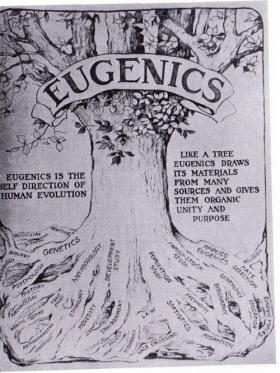 eugenics 2